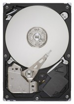 HDD Seagate ST31000524AS